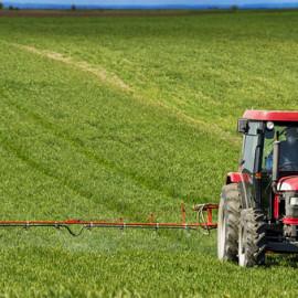 Sin pesticidas ni transgénicos: otra agricultura es posible
