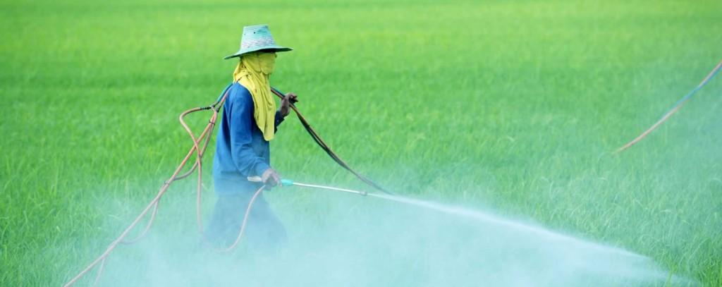 pesticidas, posibles causantes de enfermedades como el parkinson