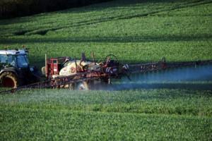 articulo pesticidas 25
