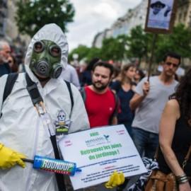 """""""Monsanto papers"""": denuncian que influyó en organismos internacionales para ocultar los efectos cancerígenos del glifosato"""