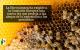 a Eurocámara ha exigido a la Comisión Europea una nueva ley que proteja a las abejas de la exposición a los pesticidas.