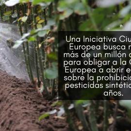 Iniciativa popular europea quiere prohibir los pesticidas sintéticos